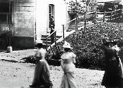 Metzgerei Springer 1900