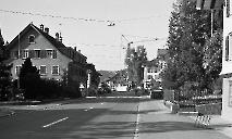 Mitteldorf 1980
