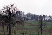 Erlenhof 1991