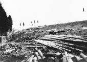 Lätte Rodung 1944