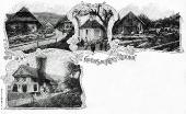 Moos 1909