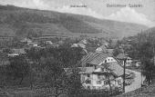 Moos 1930